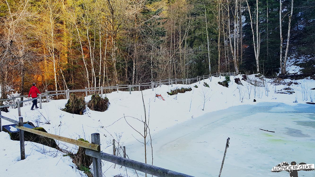 Eingefrorener Teich Ravennaschlucht Eingang