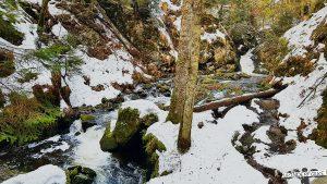 Ravennaschlucht im Winter bei Hinterzarten