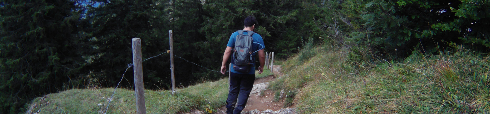 Wanderfalke Silas Landeck Wanderfalkeonline Wanderführer