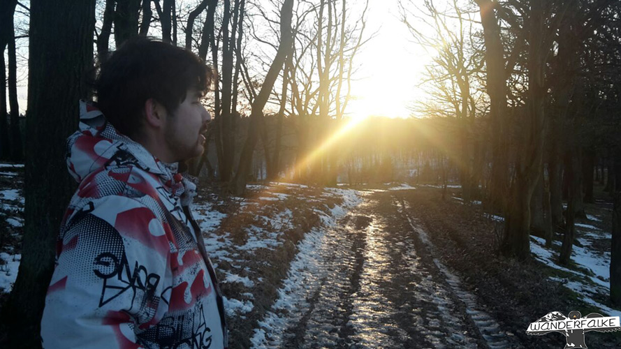Wanderfalke Silas Landeck blickt in Sonnenuntergang