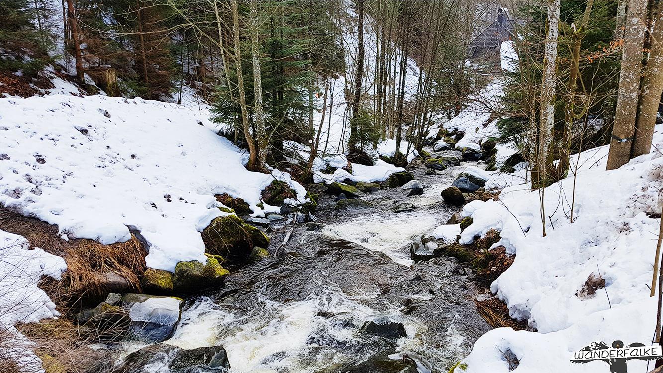 Löffeltal im Winter Hinterzarten Höllsteig
