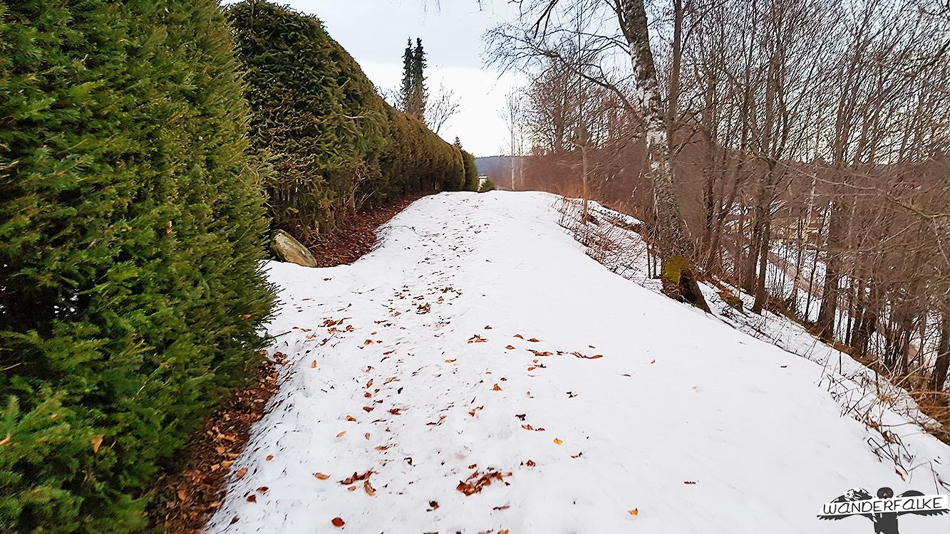 verschneite Wanderwege in Hinterzarten