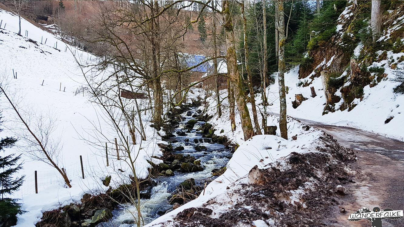 verschneites Löffeltal bei Hinterzarten
