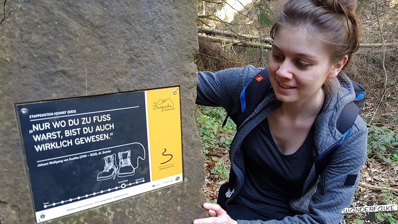Bergischer Weg Wanderfalke Wanderblog Natursteig Sieg Wandern