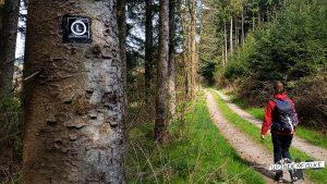 Löffelpfad Hilchenbach Wandern Siegerland Wanderfalkeonline Wanderblog
