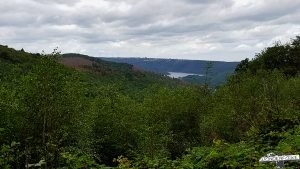 Rurseeblick Wildnis Trail Nationalpark Eifel