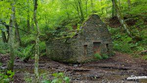 Wildnis Trail Fischerhütte Gemünd am Urftsee