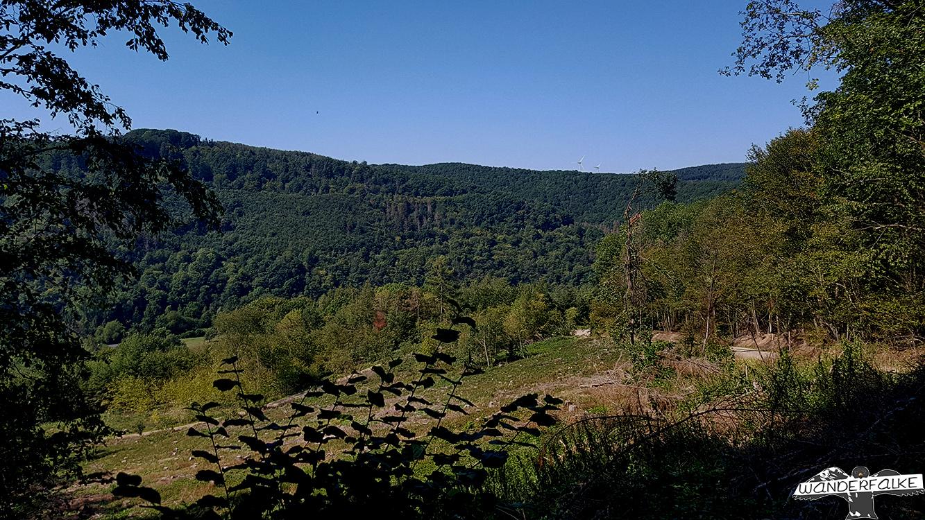 Nationalpark Eifel Buntsandsteinroute Nordeifel Nideggen Wandern Wanderblog