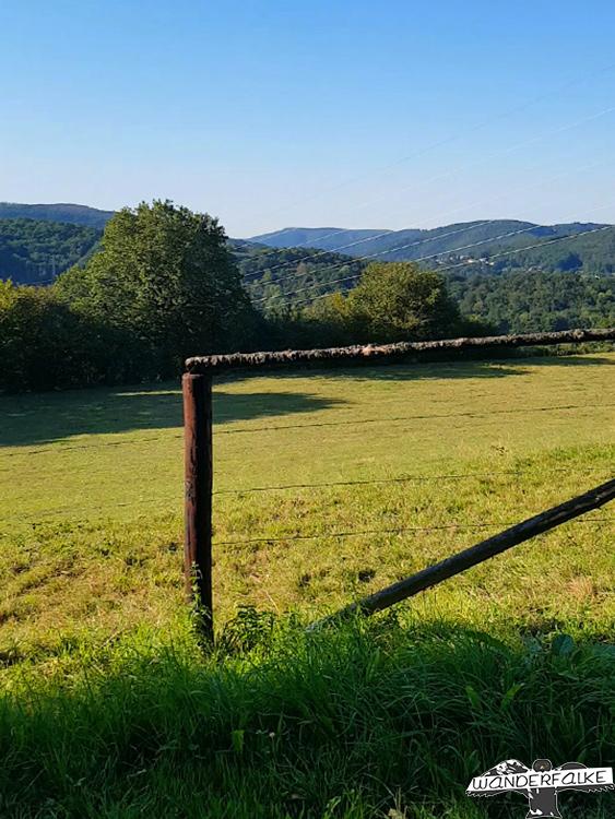 Buntsandsteinroute Nordeifel Wanderweg Wandern Nationalpark Eifel