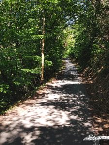 Buntsandsteinroute Nordeifel Wanderweg wandern Rur Radweg