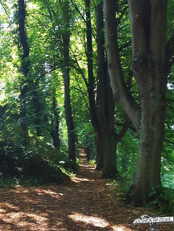 Kurgarten Nideggen im Nationalpark Eifel an der Buntsandsteinroute Nordeifel wandern