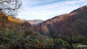 Aussicht beim Abstieg nach Rurberg Nationalpark Eifel Buntsandsteinroute