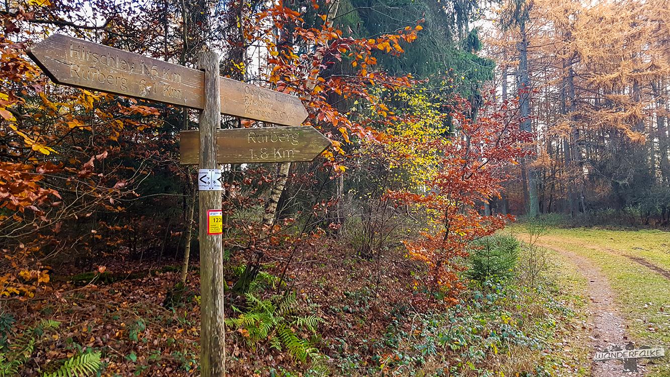 Nationalpark Eifel Buntsandsteinroute Wandern