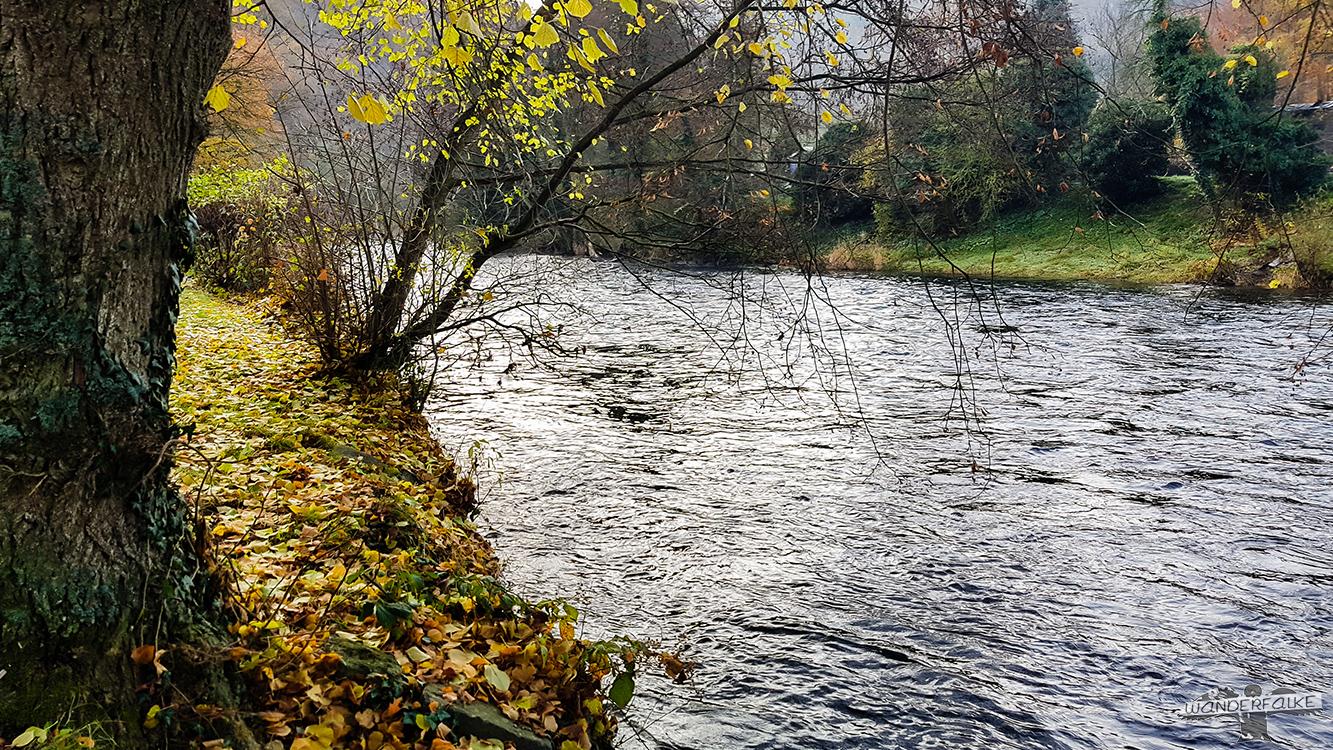Der Fluss Rur in der Rureifel am Rureifelradweg der Buntsandsteinroute