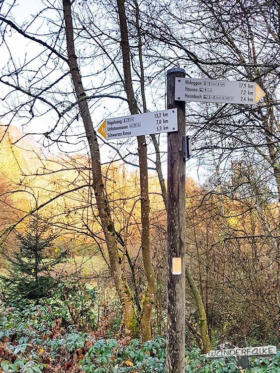 Wanderschild Talblick Buchenwälder im Nationpark Eifel in Herbstfarben