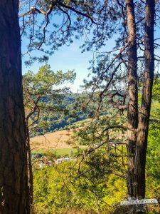 Blick nach Luxemburg Felsenweg Teufelsschlucht Ernzen Echternach NaturWanderPark delux Wanderfalkeonline wandern