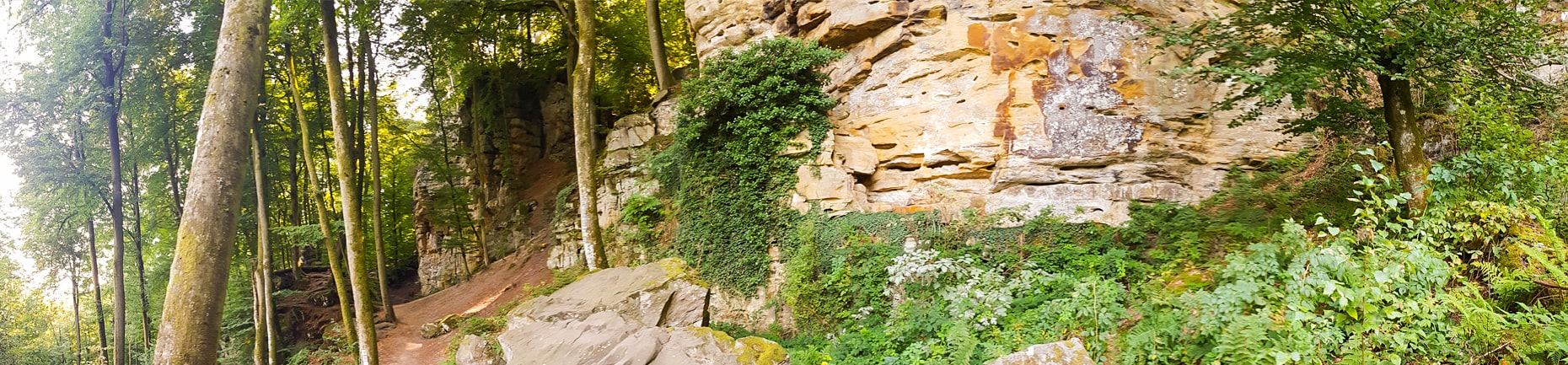 Felsenweg-Teufelsschlucht-Ernzen-Echternach-NaturWanderPark-delux-Wanderfalkeonline