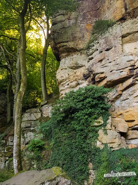Felsige Wege Felsenweg Teufelsschlucht Ernzen Echternach NaturWanderPark delux Wanderfalkeonline wandern