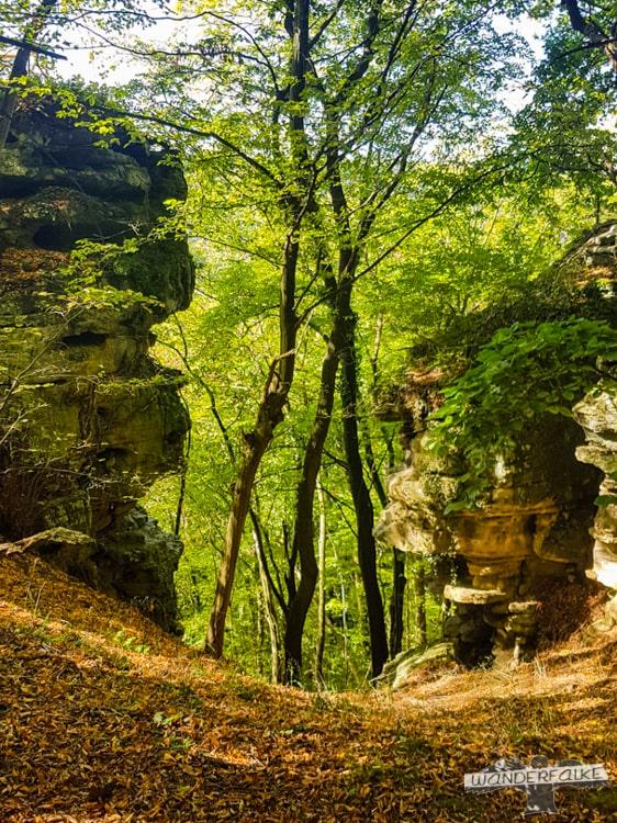Felsplateau Felsenweg Teufelsschlucht Ernzen Echternach NaturWanderPark delux Wanderfalkeonline wandern