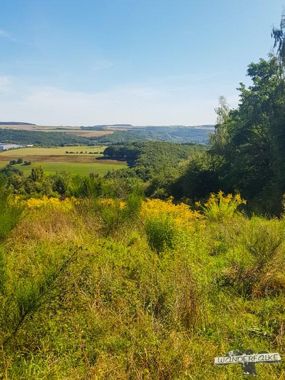 Fernsicht Felsenweg Teufelsschlucht Ernzen Echternach NaturWanderPark delux Wanderfalkeonline wandern