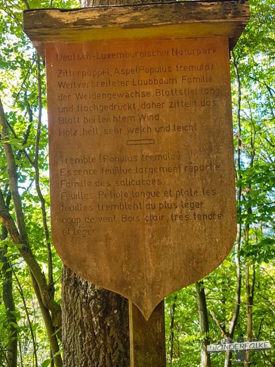 Infotafel Felsenweg Teufelsschlucht Ernzen Echternach NaturWanderPark delux Wanderfalkeonline wandern