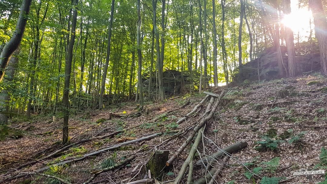 Sonnenaufgang Felsenweg 6 NaturWanderpark delux Teufelsschlucht Ernzen Echternach