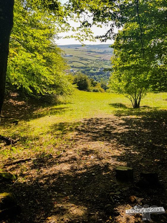 Waldlichtung Felsenweg Teufelsschlucht Ernzen Echternach NaturWanderPark delux Wanderfalkeonline wandern