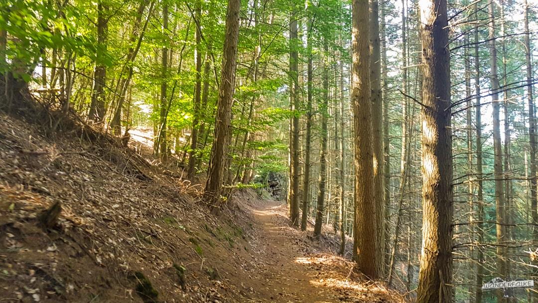 Waldpfad Felsenweg 6 NaturWanderpark delux Teufelsschlucht Ernzen Echternach