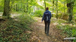 Wandern auf Waldwegen Felsenweg 6 NaturWanderpark delux Teufelsschlucht Ernzen Echternach