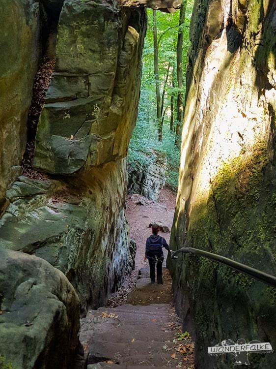 Wanderroute Felsenweg Teufelsschlucht Ernzen Echternach NaturWanderPark delux Wanderfalkeonline wandern