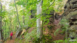 felsige Pfade Felsenweg 6 NaturWanderpark delux Teufelsschlucht Ernzen Echternach