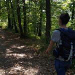 Wanderwege am Traumpfad