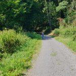 Weg ins Pönbachtal