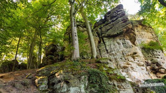 Felsenkanzel Felsenweg 6 NaturWanderpark delux Teufelsschlucht Ernzen Echternach