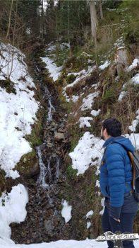 Schwarzwald Wandern Wanderfalke Silas Landeck Wanderfalkeonline