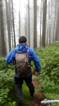 Wanderfalke unterwegs Silas Landeck