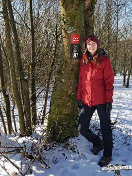 Winterwandern Rothaarsteig Wanderfalke Online Maiersports Härtetest
