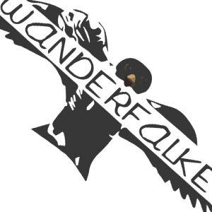 logo_wanderfalkeonline_favicon